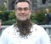 The Bee Beard Experience
