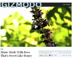 music made with bees-gizmodo-screenshot