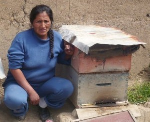 carmen - peruvian beekeeper and kiva loan recipient